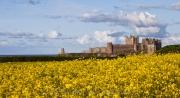 bamburgh_castle_36